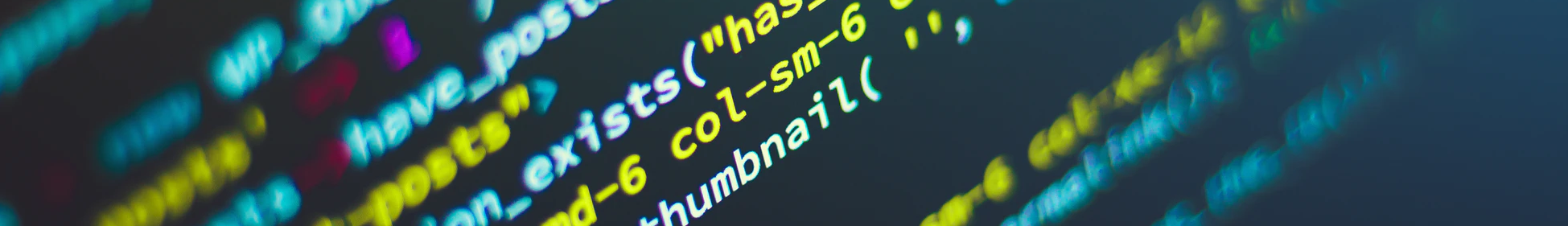 Secure Software Development: Web
